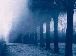 cyano serie 7 - Tuileries
